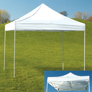 Canopy (10x10 E-Z Up tent ... : small ez up canopy - memphite.com